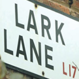 Lark Lane Acoustic Festival this weekend