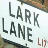 lark-lane