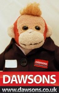 dawsons-monkey