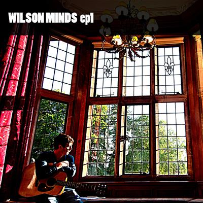 wilson minds face it cracks ep