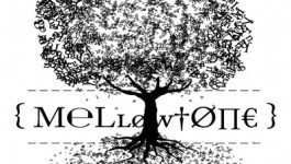 Preview: Coming up from Mellowtone Autumn 2018